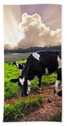Dairy Cows At Sunset Bath Towel