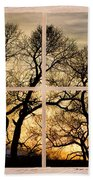 Dancing Forest Trees Picture Window Frame Photo Art View Bath Towel