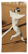 Dancing Sifaka 2 Bath Towel