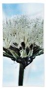 Dandelion After Rain Bath Towel