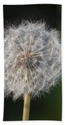 Dandelion With Abstract Grasses Bath Towel
