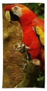 Danse Macaw Bath Towel