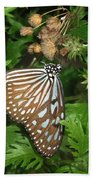 Dark Blue Tiger Butterfly Bath Towel