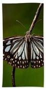Dark Glassy Tiger Butterfly On Branch Bath Towel