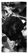 Dark Rose In Black And White Bath Towel