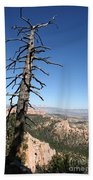 Dead Tree At Bryce Canyon  Overlook Bath Towel