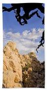 Dead Tree Limb Hanging Over Rocky Landscape In The Mojave Desert Bath Towel