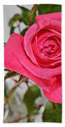 Deep Pink Rose - Summer - Rosebuds Bath Towel
