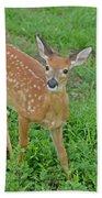 Deer 11 Bath Towel