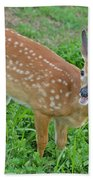 Deer 20 Bath Towel