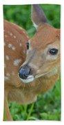Deer 21 Bath Towel