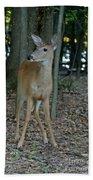 Deer 3 Bath Towel