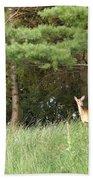 Deer At Dusk V1 Bath Towel