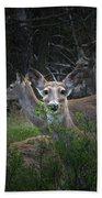Deer Family Bath Towel