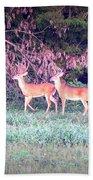 Deer-img-0151-003 Bath Towel