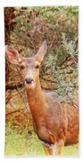 Deer In Forest Bath Towel