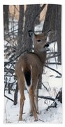 Deer In The Grove Bath Towel