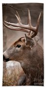 Deer Pictures 491 Bath Towel