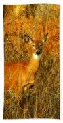 Deer Spotted In A Golden Glowing Field  Bath Towel
