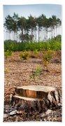 Woods Logging One Stump After Deforestation  Bath Towel