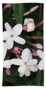 Delicate White Jasmine Blossom With Green Background  Bath Towel