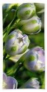 Delphinium Buds Blooming Bath Towel