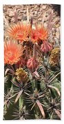 Desert Beauty Bath Towel