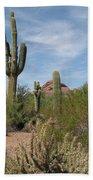Desert Landscape With Saguaro Bath Towel