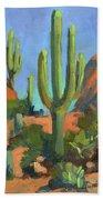Desert Morning Saguaro Bath Towel