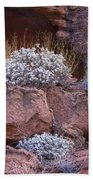 Desert Plant Life Bath Towel