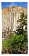 Devil's Tower Through The Trees Bath Towel