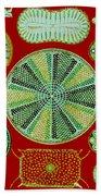 Diatoms-ernst Haeckel Bath Towel