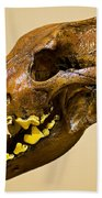 Dire Wolf Skull Fossil Bath Towel