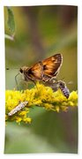 Diversity - Insects Bath Towel