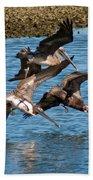 Diving Pelicans Bath Towel