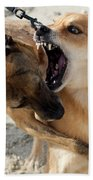 Dogs Fight On The Beach In Emerald Bath Towel