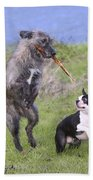 Dogs Playing With Stick Bath Towel