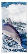 Dolphins Jumping Bath Towel