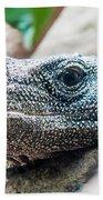 Dragon Lizzard Portrait Closeup Bath Towel