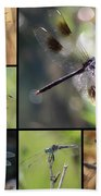 Dragonflies On Twigs Collage Bath Towel