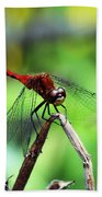 Dragonfly Hard At Work Bath Towel