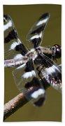 Dragonfly Twelve Spot Skimmer Bath Towel