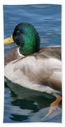 Green Headed Mallard Duck Bath Towel