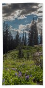 Dramatic Rainier Flower Meadows Bath Towel