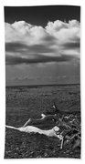 Driftwood On The Beach At Whitefish Point Bath Towel