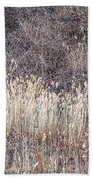 Dry Grasses And Bare Trees In Winter Forest Bath Towel