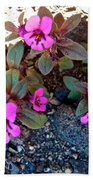 Dwarf Purple Monkeyflower In Lava Beds Nmon-ca Bath Towel