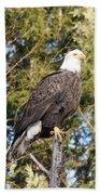 Eagle 1979 Bath Towel