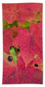 Early Fall Of Norway Maple Bath Towel