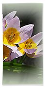 Early Spring Blossoms Bath Towel